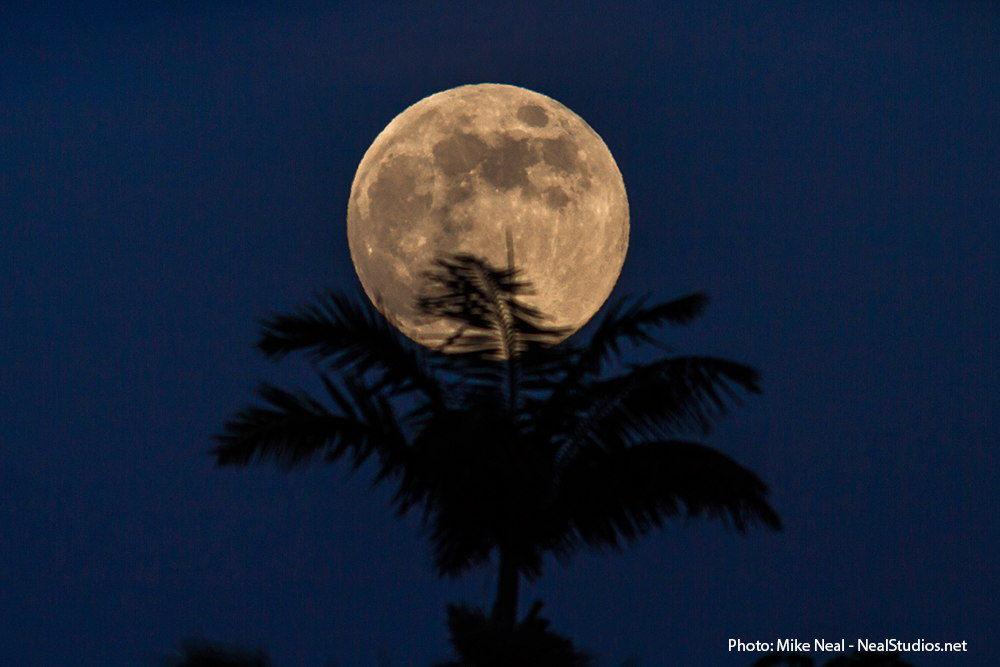 Ученые считают, что жизнь на других планетах возможна и без больших лун