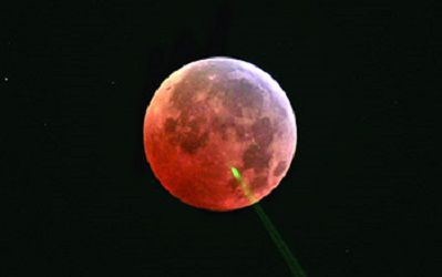 Лунное затмение помогло раскрыть тайну «проклятия полной Луны»