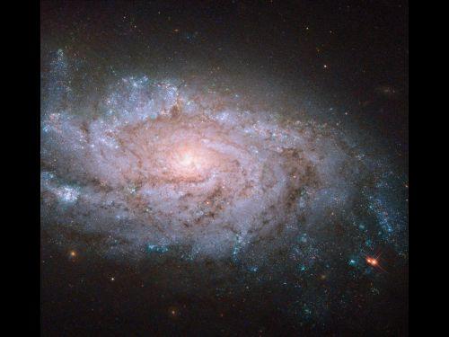 Hubble изучает галактику NGC 1084