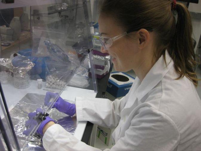 Витамин РР обнаружен в метеоритах