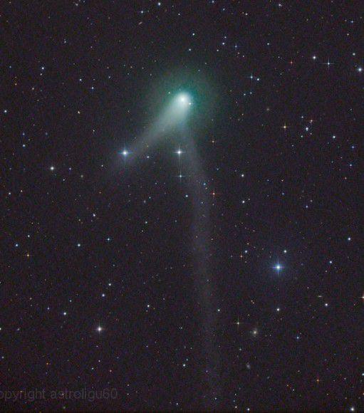 Комета PANSTARRS демонстрирует сразу два хвоста