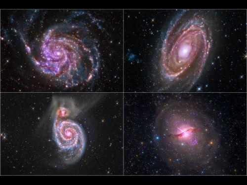 Профессионалы и астрономы-любители объединяют свои усилия