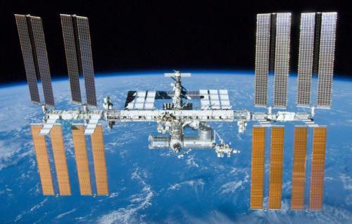 Астронавты NASA занимаются выращиванием салата на борту МКС
