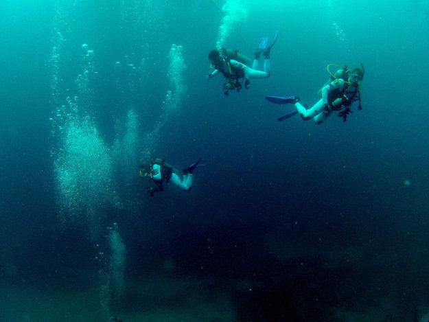 В июле и сентябре астронавты примут участие в подводных научных миссиях