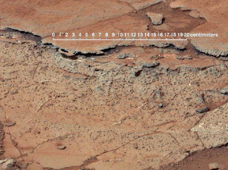 Обнаружено сходство почв Марса и Земли