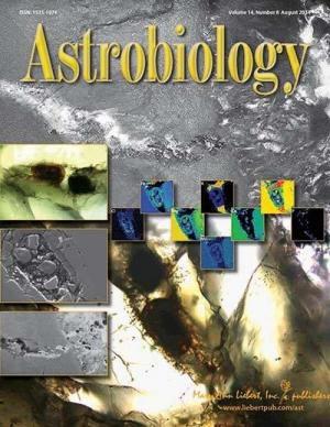 Ученые исследуют загадочную структуру в марсианском метеорите