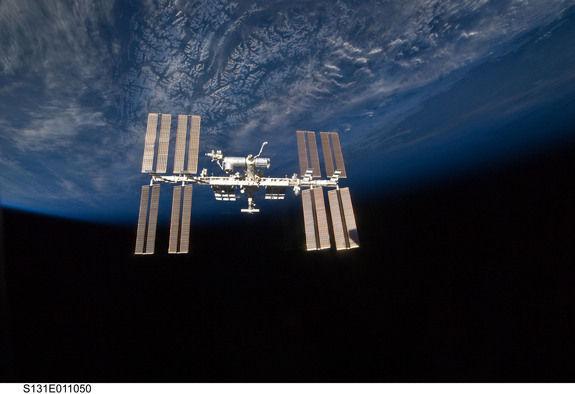 Появились сообщения о том, что на МКС обнаружен планктон