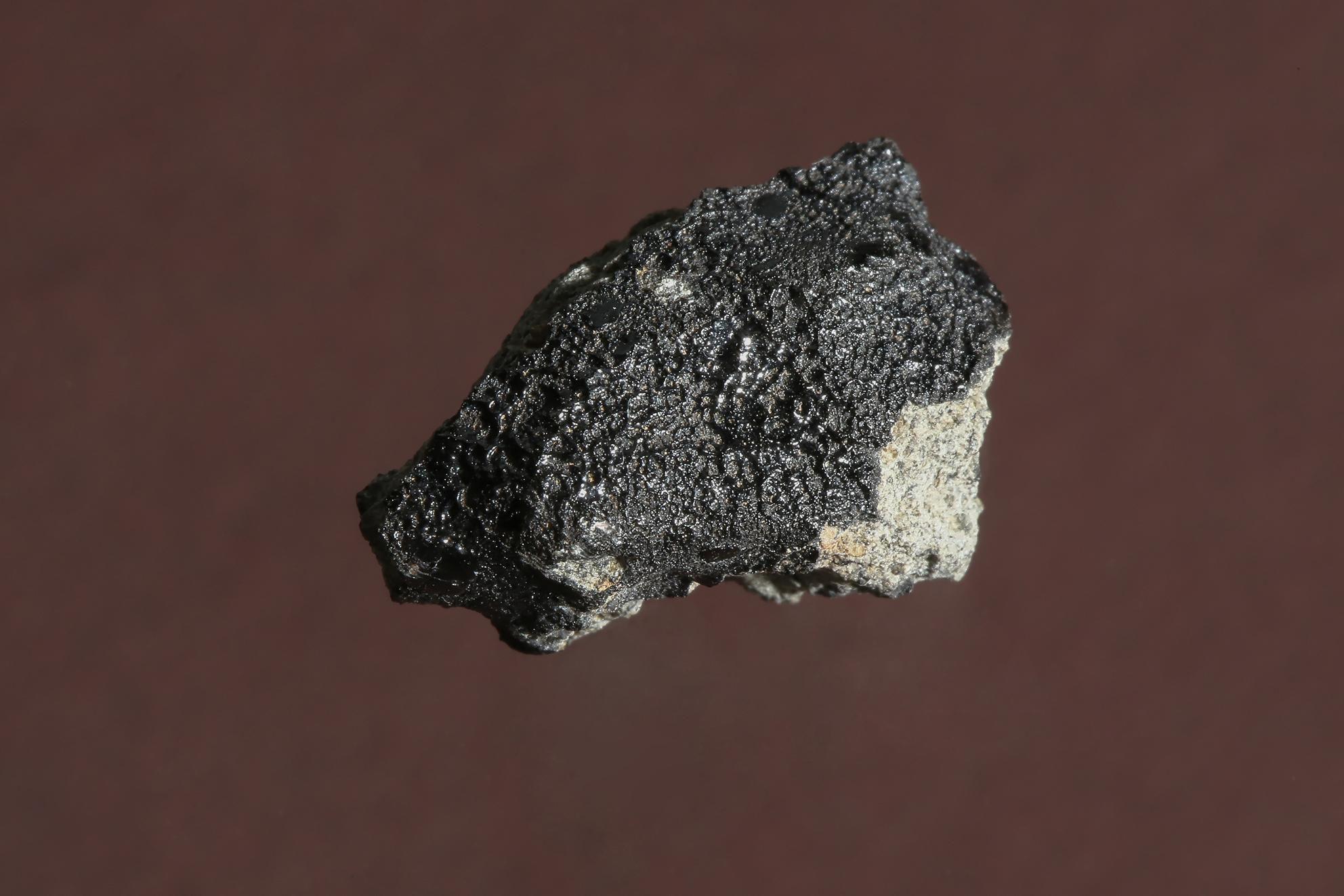 В метеорите с Марса обнаружены следы возможного наличия биологической активности