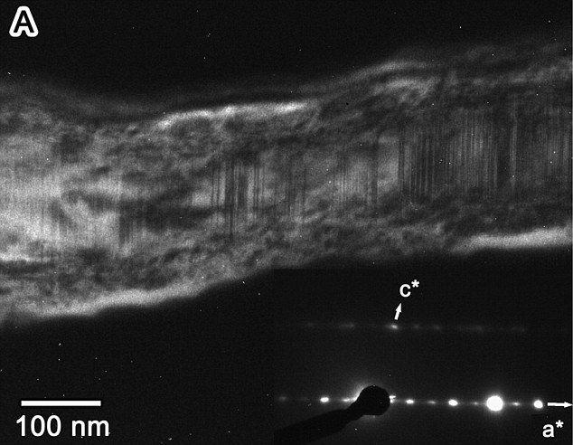 Кометную пыль обнаружили в Антарктике