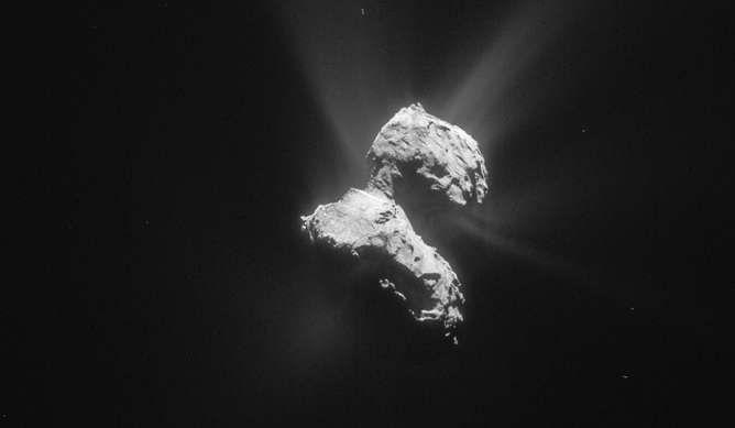 Нет никаких оснований предполагать наличие жизни на комете 67P